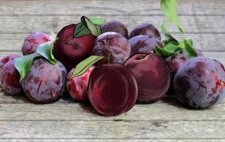 Blog2_plums